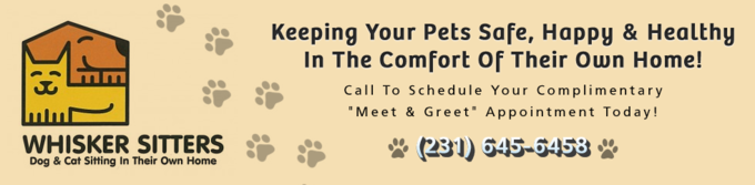Whisker Sitters Pet Sitting & Dog Walking Service
